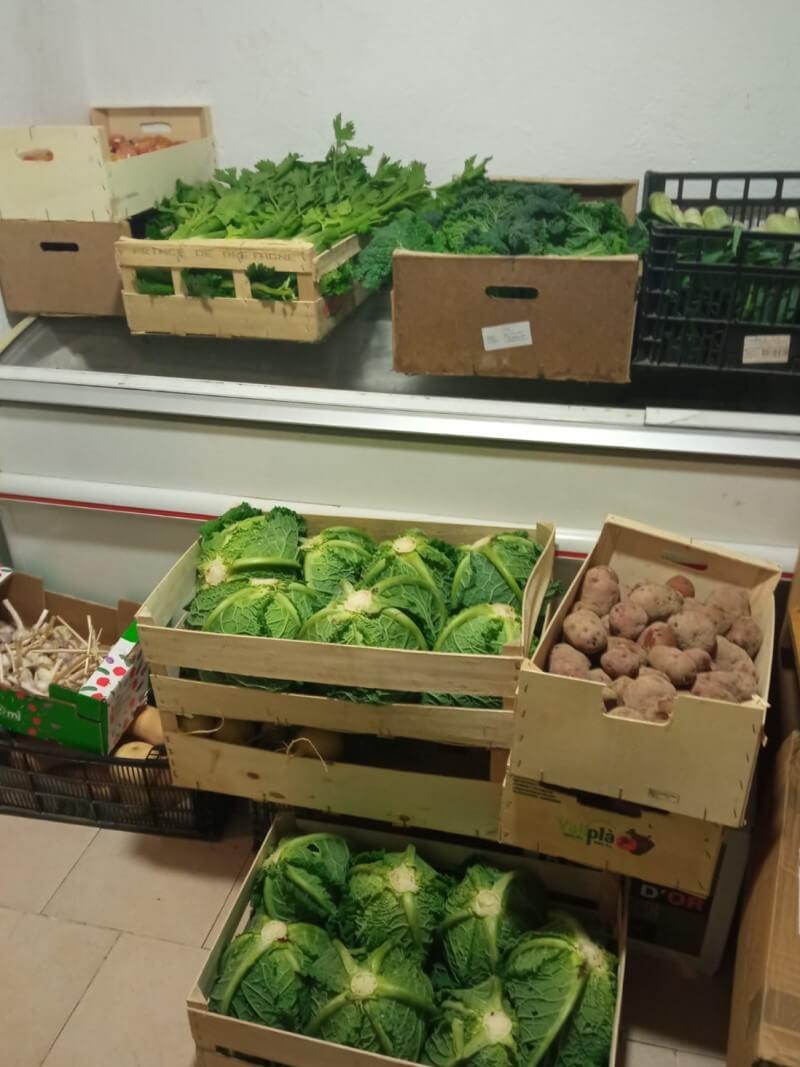 1a entrega verdures