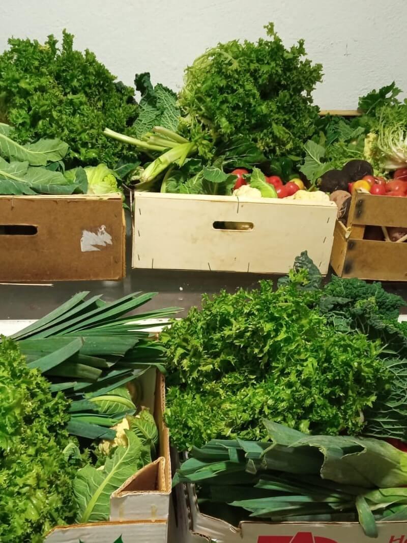 2a entrega verdures