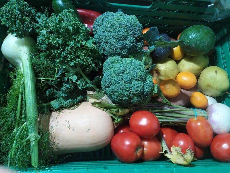 verdures-1-1-1-1.jpg